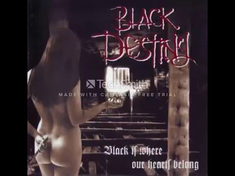 Black Destiny Creator Of Descent