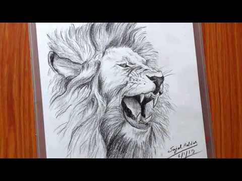 drawing-tutorial-for-beginners-|-how-to-draw-a-lion