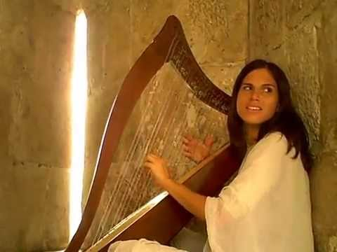 Beautiful music played on David's Harp in Jerusalem Old City Jaffa Gate