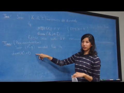 El problema de la dimensión de Hausdorff para Maracas (Raquel Perales)