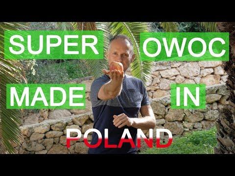 Czy znasz ten SUPER OWOC Made in Poland? 🍎🍏🍎🍏🇵🇱