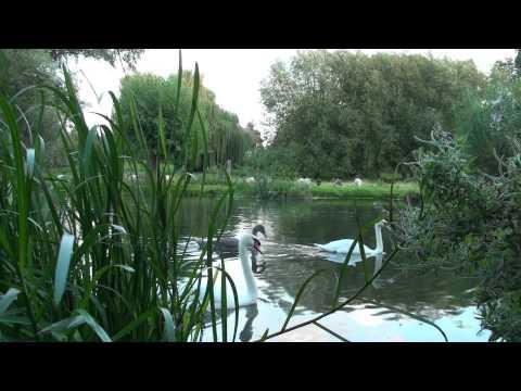 Invitation to Cambridge Sonja Joubert's Music