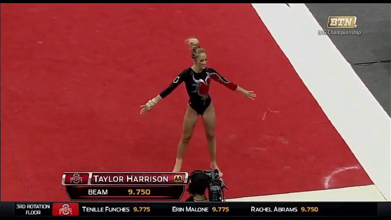 Taylor Harrison Gymnastics