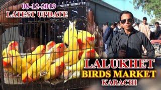 Lalukhet Sunday Birds Market Karachi 8-12-19 Latest Updates (JAIC) video in Urdu/Hindi thumbnail