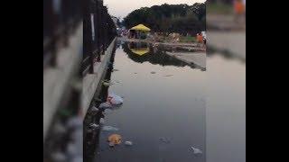 видео В р.Черная сбрасываются неочищенные сточные воды
