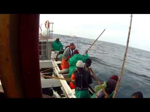 TUNA fishing CAPE TOWN SOUTH AFRICA