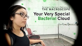 Your Very Special Bacterial Cloud