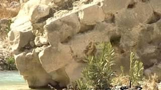 Splendor of Ardeshir مستند شکوه اردشیر