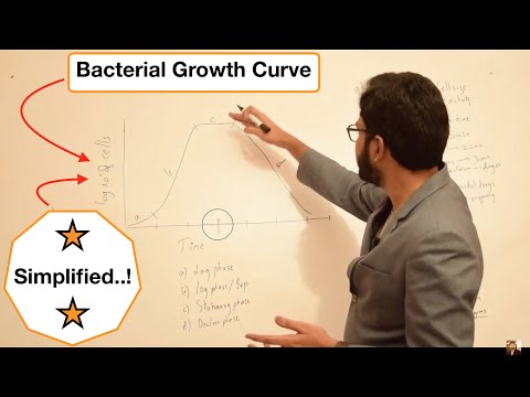 Bacterial Growth Curve Simplified