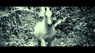 Pathfinder - la leggenda del guerriero vichingo - Trailer