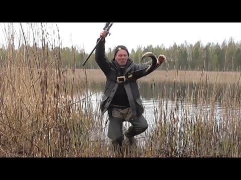 Огромная щука перегрызла поводок. Щука на поплавок. Рыбалка в Беларуси.