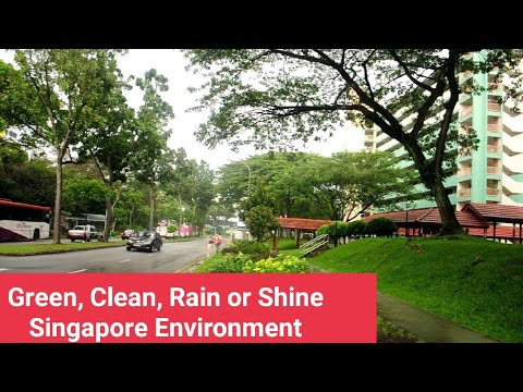 Green, Clean, Rain or Shine Singapore Environment