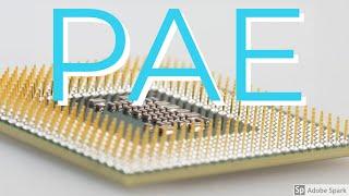 Керівництво По Експлуатації Intel 6 Pae