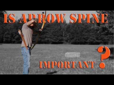 Is Arrow Spine Important? Recurve Bow Shooting Tips