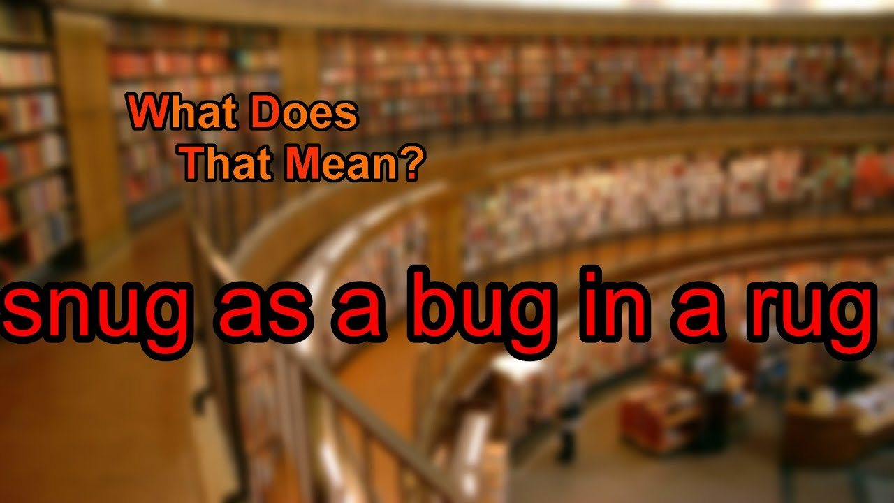 What Does Snug As A Bug In Rug Mean