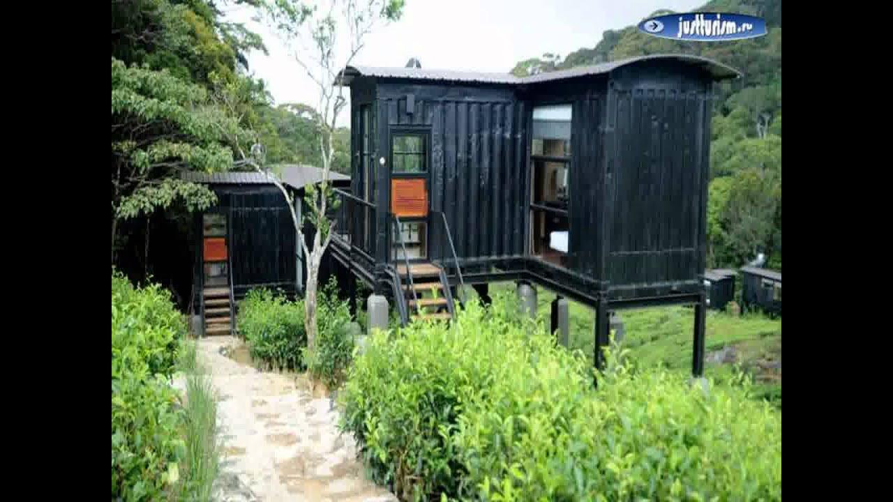 matara district deniyaya the rainforest. Black Bedroom Furniture Sets. Home Design Ideas