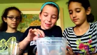 How to make flubber with DSG