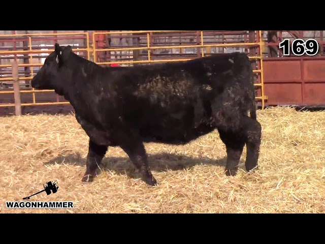 Wagonhammer Ranches Lot 169