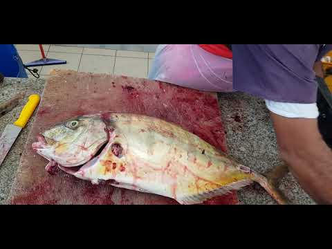 Golden Trevally Fish Cutting Skills In Asia।Best Way To Fillet Trevally Fish।Fish Cutting Ways