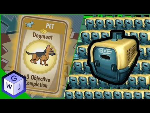 Fallout Shelter Another 40 Pet Carriers Opening Rare Dogmeat