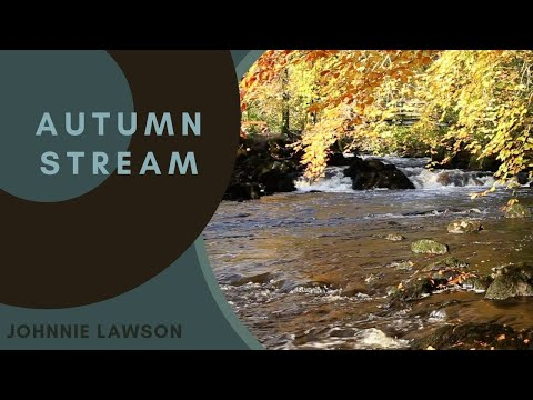 Nature Sounds of a Forest for Calm Relaxation & Meditation with Birds Singing & Sound of a Waterfall