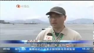 《亞視新聞 aTV News》團體指港珠澳大橋工程令附近中華白海豚近絕跡 (20130518)
