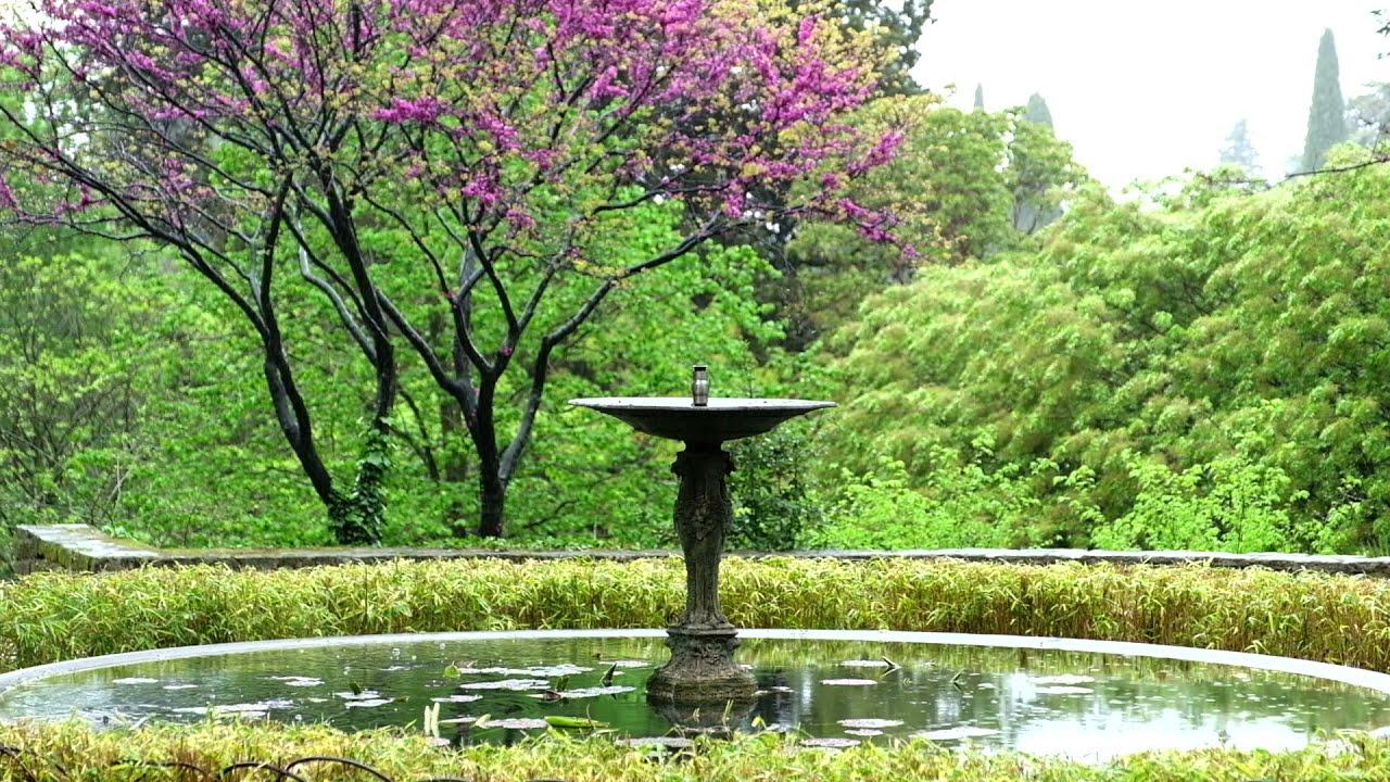 Méditation ambiance - Relaxation, sommeil, détente : Pluie, Orage et Nature - rain, thunder, asmr