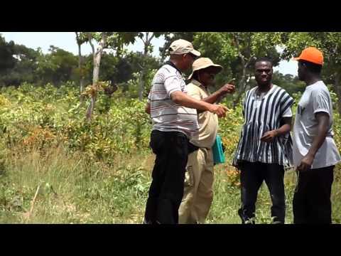 Sankana Naa leads Home Energy Africa