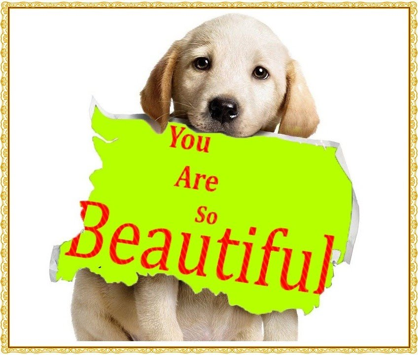 You Are So Beautiful Live Special Dedication Youtube