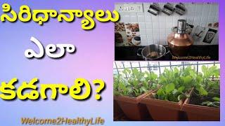 Millet|How to wash Millets(Siridhanya)|Telugu