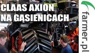 Claas Axion na gąsienicach | FARMER.PL