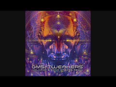 G.M.S. - Tweakers (Volcano & Sonic Species Rmx) ᴴᴰ