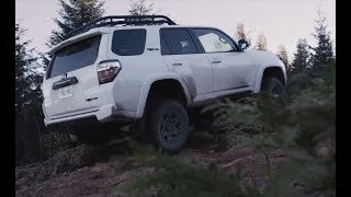 The Sequoia Earns Its TRD Pro Badge on Vancouver Island   Toyota