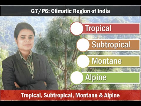 G7/P6: Indian Climatic Regions & Forest Types