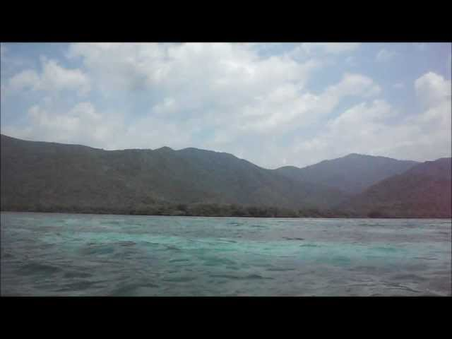 En El Medio de La Cienaga - Aragua, Venezuela.wmv Travel Video