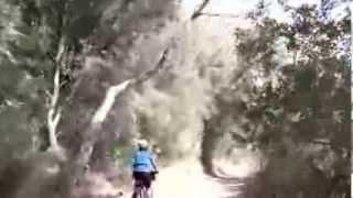 Percorso ciclabile da Camping Baia Verde a Ranieri