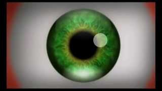 Eye - OPTICAL ILLUSION