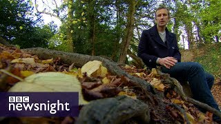 Robert Macfarlane: Do children in the UK spend enough time outdoors? - BBC Newsnight