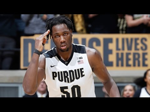 Caleb Swanigan Official Sophomore Year Highlights // 2016-2017