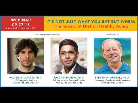 Webinar | It's Not What You Eat, but When: The Impact of Diet on Healthy Aging