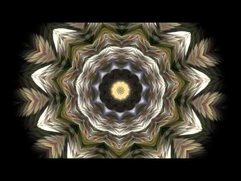 The Splendor of Color Kaleidoscope Video v1.2 1080p
