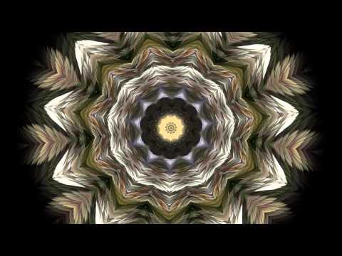 The Splendor of Color Kaleidoscope Video v1.2 1080p
