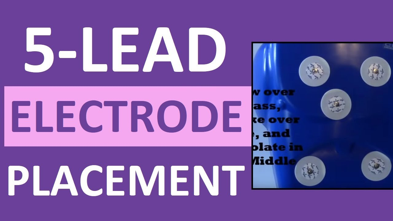 Download 5 Lead Electrode Placement Cardiac Telemetry Monitor for EKG/ECG