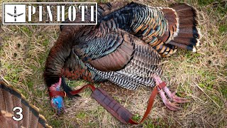 CLAWING for a LAST MINUTE HAWAII GOBBLER | TURKEY HUNTING PUBLIC LAND on the ISLAND- Pinhoti 2021
