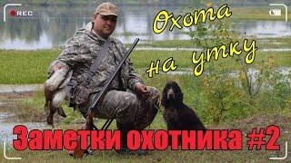 Охота на утку с Русским охотничьим спаниелем 2016