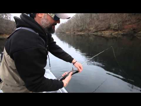 Trout Fishing On The Little Red River