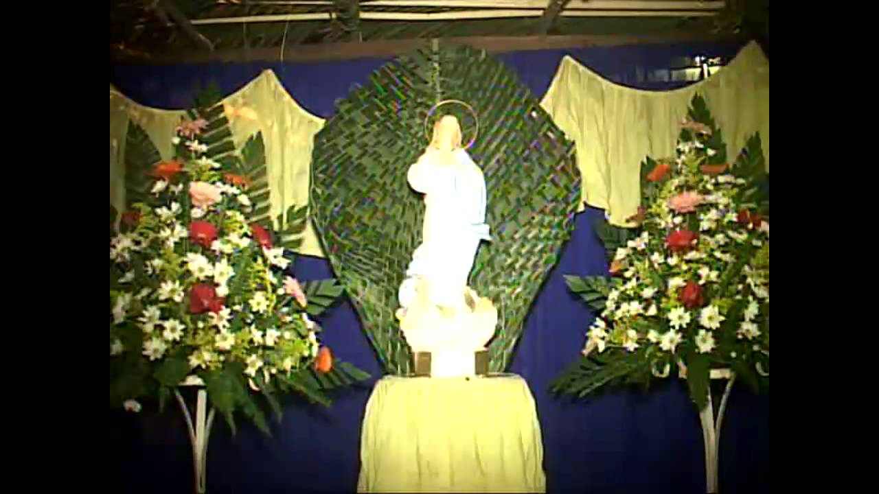 Decoracion Altar Virgen De Guadalupe ~ Altares a la Virgen Maria en El Viejo  YouTube