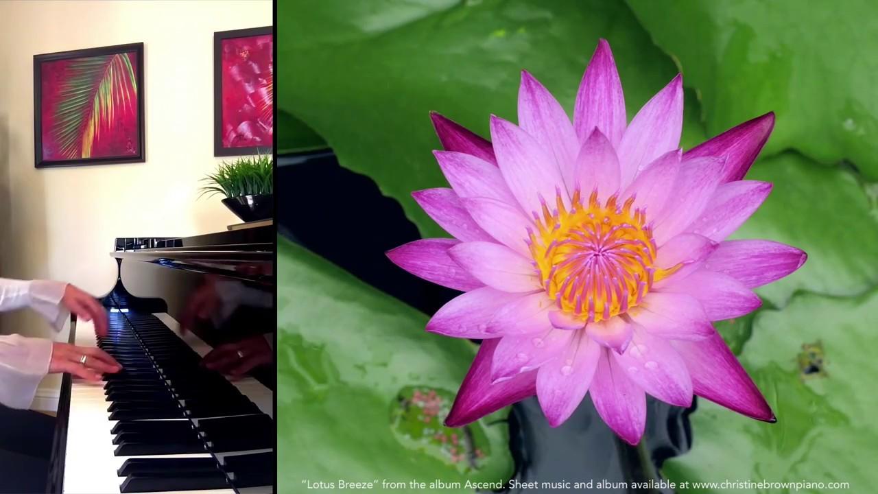 Christine Brown Solo Piano Lotus Breeze From The Album Ascend