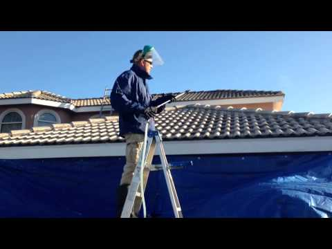 Soft Wash Roof Cleaning Youtube