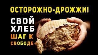 Как приготовить домашний хлеб. Рецепт закваски.